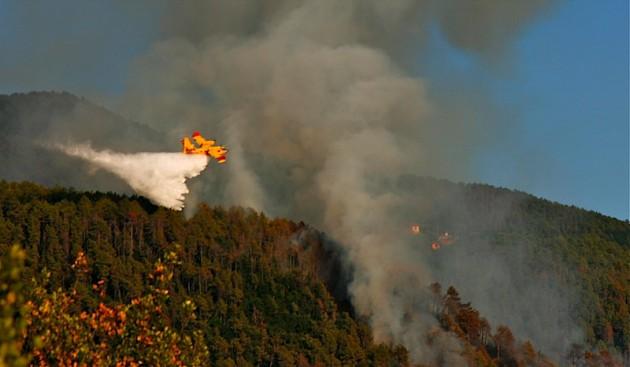 Bushfire in Cinque Terre!