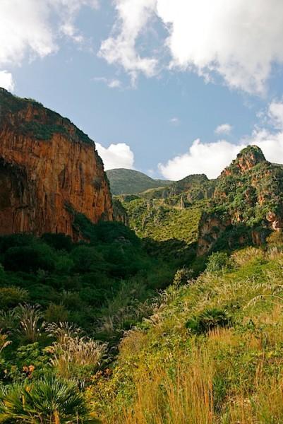 Lush valley at Zingaro
