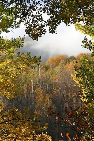 Mount Zoccolaro