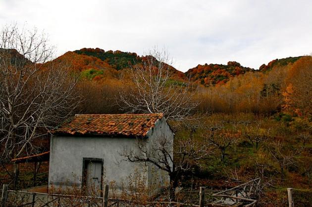 Abandoned hut by Mount Zoccolaro