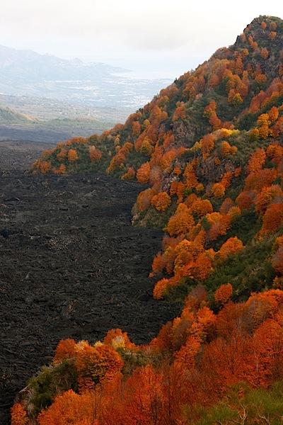 Valle de Bove as seen from Mount Zoccolaro