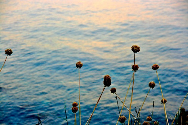 Aci Castello's water