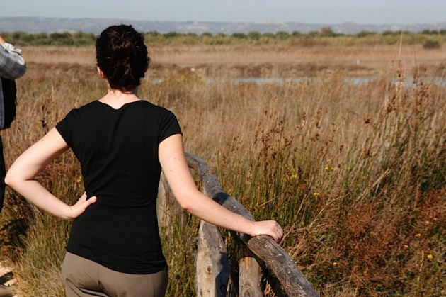 Katherine + Wetlands