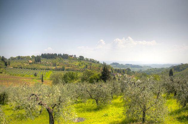 Tuscany HDR