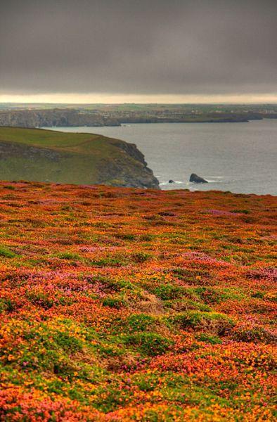 Cornwall Coast UK HDR
