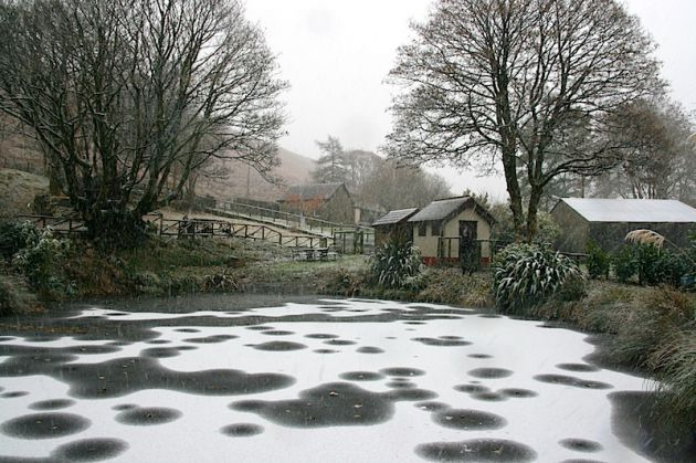Frozen Pond Snow