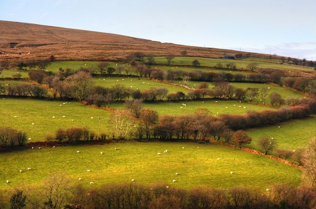 Wales Countryside HDR