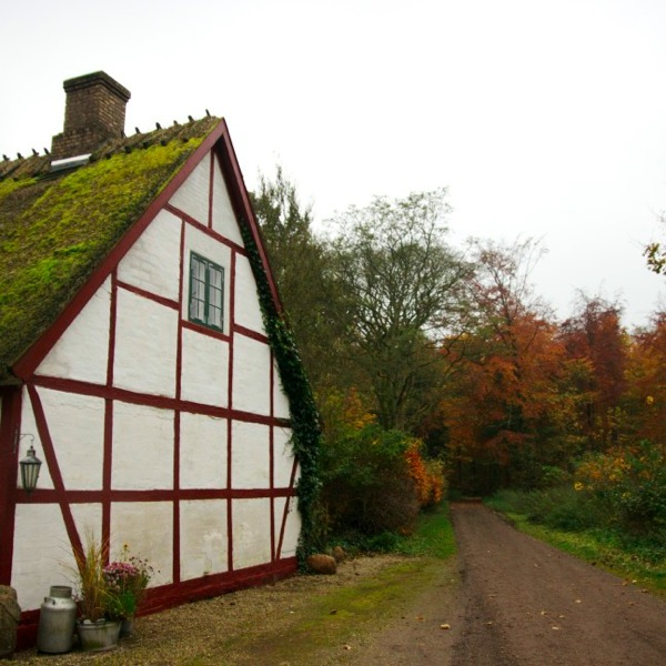House in Denmark with Moss on Roof