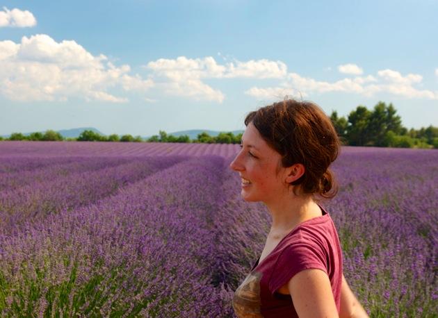 lavender-provence-katherine herriman